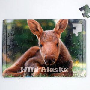 Wild Alaska Puzzle (40 Pieces)